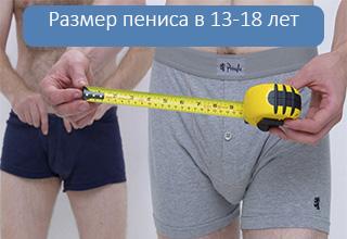 Размер пениса у подростков